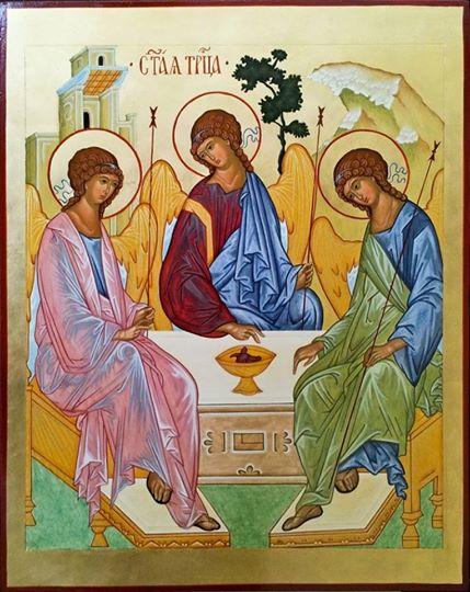 Suy niệm Lời Chúa hằng ngày tuần XIV thường niên: Lm. Phêrô Phạm Ngọc Lê