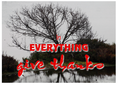 in_everything_give_thanks-001-content