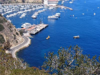 catalina_island_219-large-content
